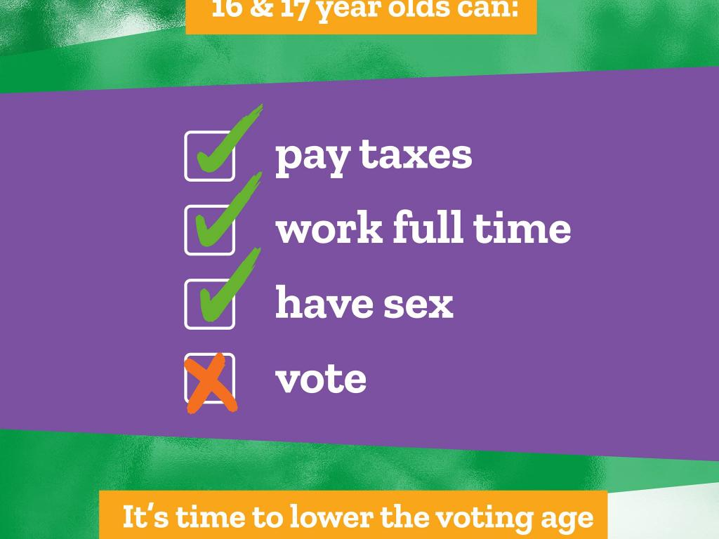 16 & 17 year olds can pay taxes, work full time, and have sex. But they cannot vote.